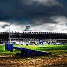 Murrayfield Stadium, Edinburgh, Scotland by Den McKervey