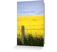 Alberta Prairies Greeting Card