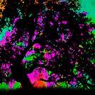 Rainbow Sunshine by Andrew Simoni