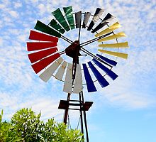 Colour Wheel by Walter Cahn