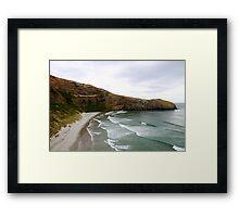 Penguin Beach Framed Print