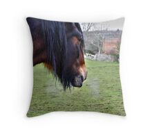Line of Sight Throw Pillow