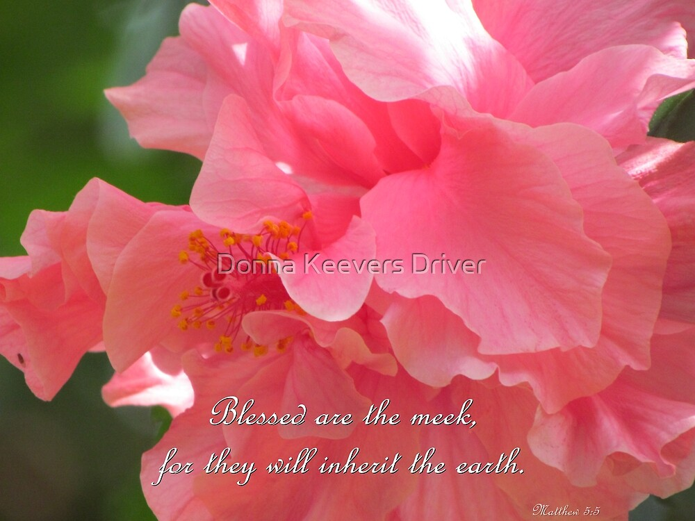 Matthew 5:5 by Donna Keevers Driver