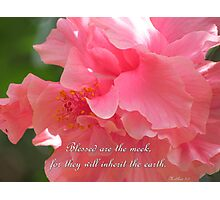 Matthew 5:5 Photographic Print