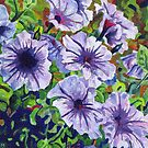 Purple Petunias by Morgan Ralston