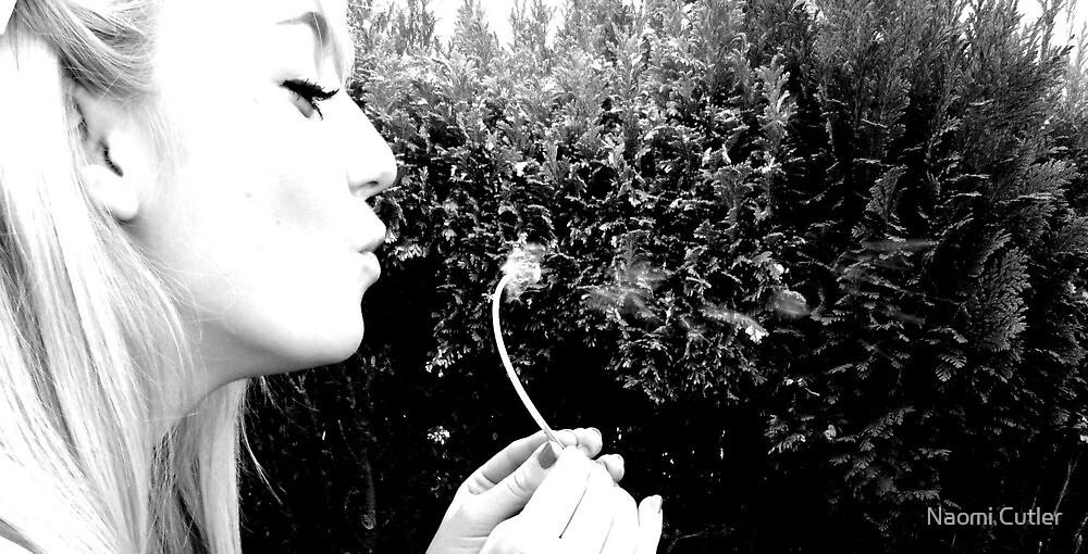 Dandelion by Naomi Cutler