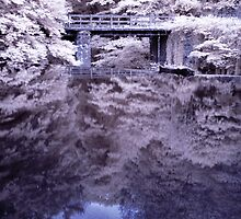 infra red roslin glen 2 by TheLostArt