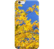 October gold iPhone Case/Skin