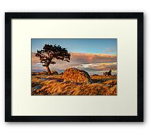 The Evening Brings Relief Framed Print