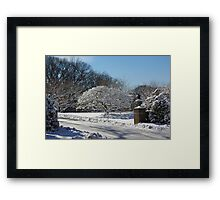 Snow Covered Framed Print
