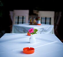 Rose on table by iosifkapa