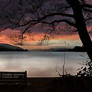Echos of Campbell at Coniston by Martin Jones