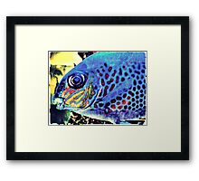 Blue Tropical Fish Framed Print