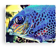 Blue Tropical Fish Canvas Print