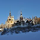Castle Peles in Winter by Kasia Nowak