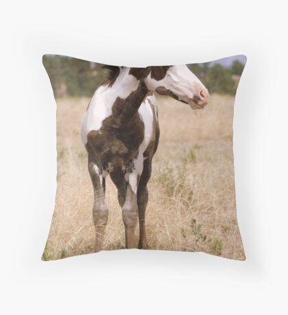 Paint Foal Throw Pillow