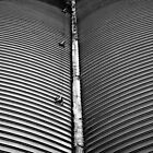 Curved Lines by Paul Barnett