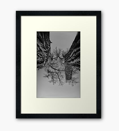 Dueling Brothers Fighting Trees Framed Print