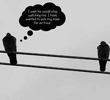 What birds think about by Scott Mitchell