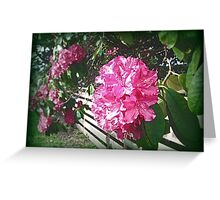 Rhododendron Tour One Greeting Card