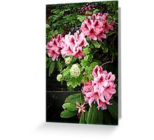 Rhododendron Tour Two Greeting Card