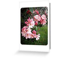 Rhododendron Tour Three Greeting Card