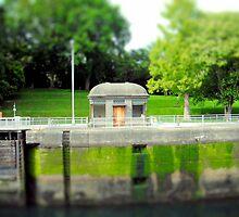 Along the Ballard Locks by Alice Schuerman