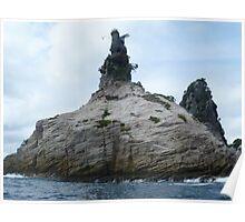Champagne Rock, Coromandel Peninsula, North Island, New Zealand Poster