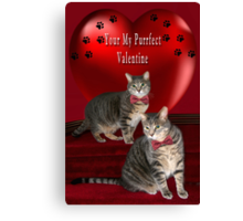 ❁ ♥¸.•*AM I YOUR PURRFECT VALENTINE?❁ ♥¸.•* Canvas Print