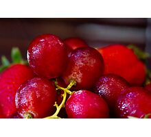 Bunch of red grapes Photographic Print