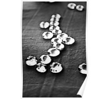 Glass beads in black & white Poster