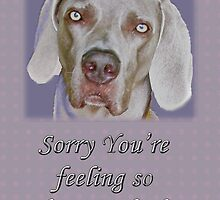Get Well Card - Weimaraner by MotherNature