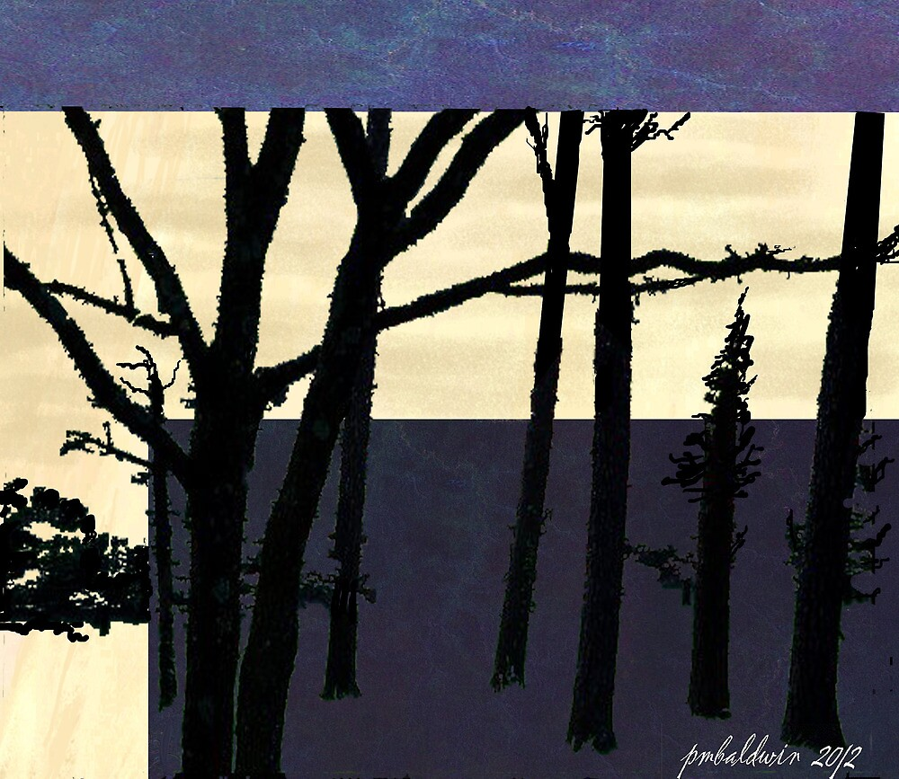 """""""Morning Forest"""" by Patrice Baldwin"""
