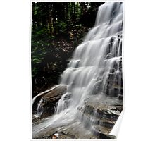 Bear Creek Falls # 1 Poster