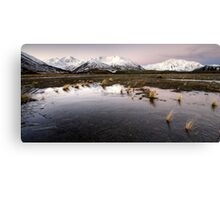 Frozen to the Earth Canvas Print