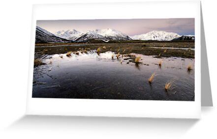 Frozen to the Earth by Michael Treloar
