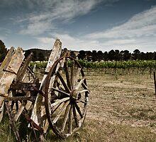 Old cart in Dalgety by Troy Barrett