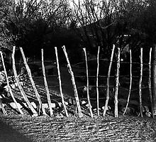 Simple Fence by James2001
