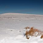 Winter on Great Whernside by Andrew Leighton