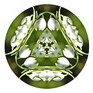 Snowdrop Kaleidoscope by Lynn Bolt