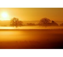 """MISTY GOLDEN"" Photographic Print"