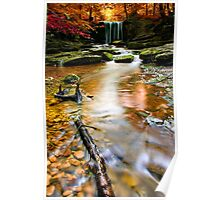 autumnal waterfall Poster