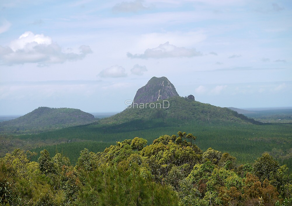 Glass House Mountains by SharonD