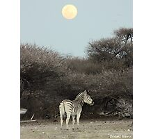 The Moon & The Stripes Photographic Print