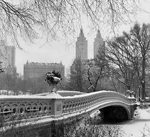 Bow Bridge Daytime by Randy  LeMoine