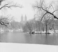 Last Snow by Randy  LeMoine