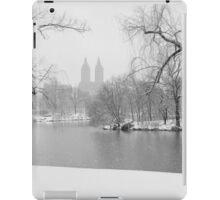 Last Snow iPad Case/Skin