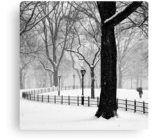 Central Park Walker Canvas Print