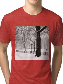 Central Park Walker Tri-blend T-Shirt