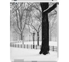 Central Park Walker iPad Case/Skin